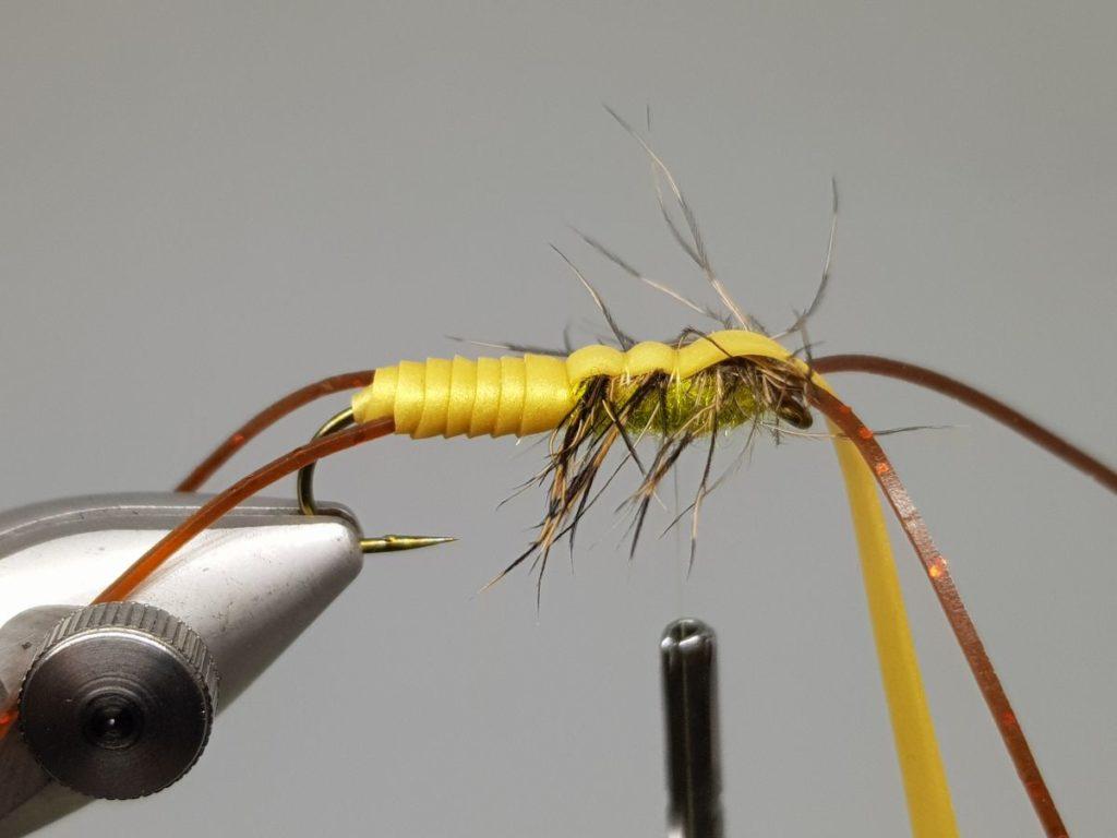Stonefly nymph