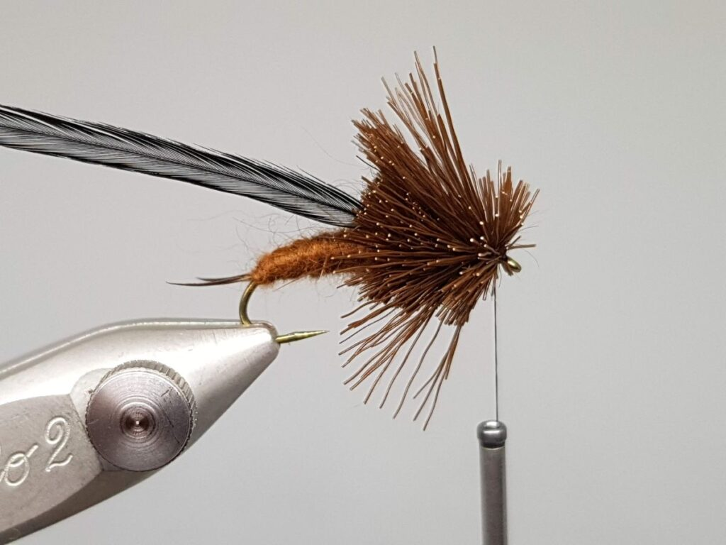 Natural Drift Stonefly Nymph